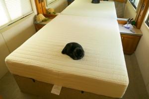 New mattress! :)